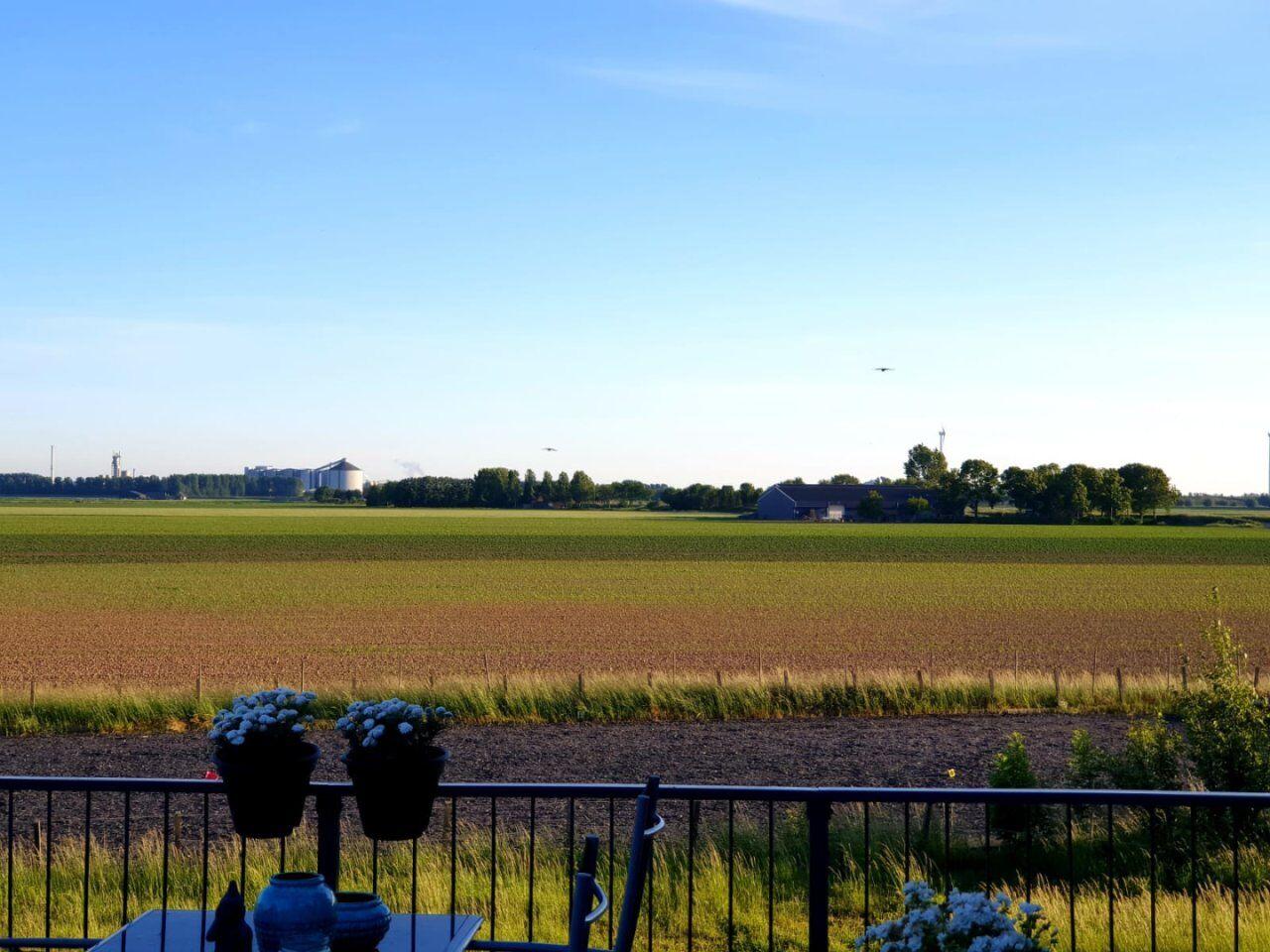 11675-oude_heijningsedijk_37-heijningen-2876486