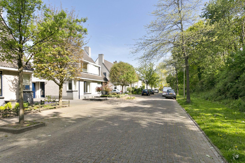 26406-dijkplan_48-steenbergen-815569795
