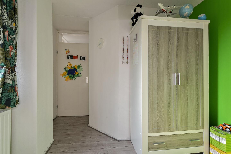 7233-rietveen_20-steenbergen-2719894725