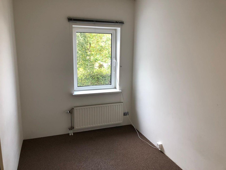 b513-leerlooierij_20-steenbergen-2042239407